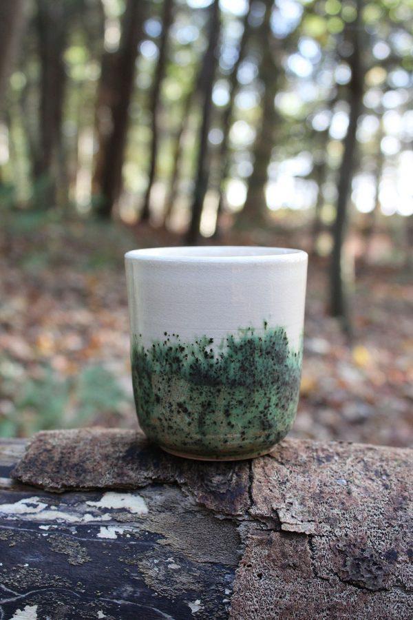 Mokje Forest