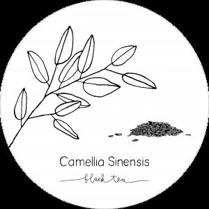 Rond_Camellia_Black2