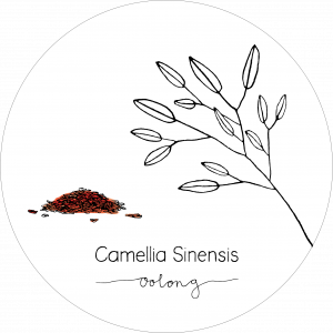 Rond_Camellia_Oolong2